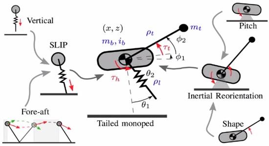 Эскиз механизма действия робота тушканчика